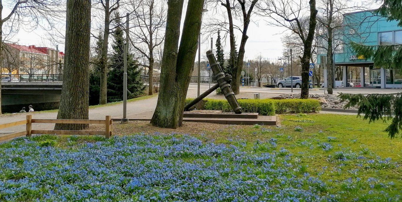 Suuri ankkuri. Muistomerkki. Sinisiä kukkia.